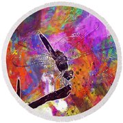 Close Up Dragonfly Insect Macro  Round Beach Towel