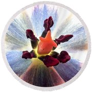 Close Up From A Tulip Flower Round Beach Towel