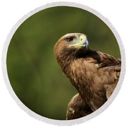 Close-up Of Golden Eagle With Head Turned Round Beach Towel