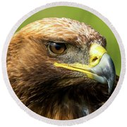 Close-up Of Golden Eagle With Turned Head Round Beach Towel