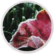 Close Up Of Leaf And Frost Round Beach Towel