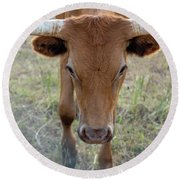 Close Up Of Longhorn Head Through Fence Round Beach Towel