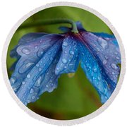 Close-up Of Raindrops On Blue Flowers Round Beach Towel