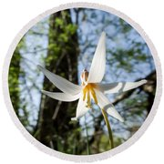 Close-up Of White Trout Lily Round Beach Towel