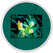 Close Up Of Yellow Wild Flowers Round Beach Towel