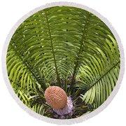 Close-up Palm Leaves Round Beach Towel