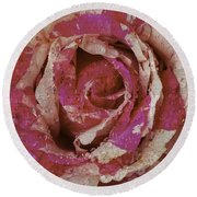 Close Up Pink Red Rose Round Beach Towel