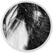 Close Up Portrait Of A Horse In Falling Snow Round Beach Towel