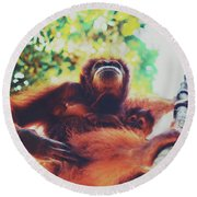 Closeup Portrait Of A Wild Sumatran Adult Female Orangutan Climbing Up The Tree And Holding A Baby Round Beach Towel
