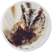 Closeup Portrait Of A Young Owl Looking At The Camera Round Beach Towel