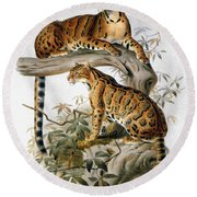 Clouded Leopard, 1883 Round Beach Towel