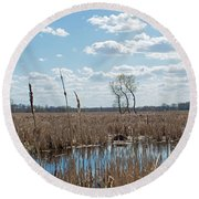 Clouds Of Cotton Round Beach Towel