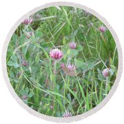 Clover In The Grass Round Beach Towel