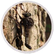 Club Tailed Robber Fly Round Beach Towel