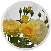 Cluster Of Yellow Roses Round Beach Towel