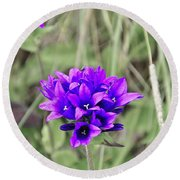 Clustered Bellflower Round Beach Towel