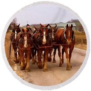 Clydesdale Amish Plow Team Round Beach Towel