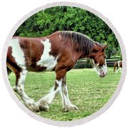 Clydesdale Round Beach Towel