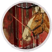 Clydesdale Ripped Round Beach Towel