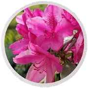 Coast Rhododendran- Washington State Flower Round Beach Towel