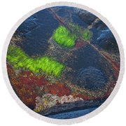 Coastal Floor At Low Tide Round Beach Towel