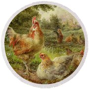 Cochin China Fowls Round Beach Towel