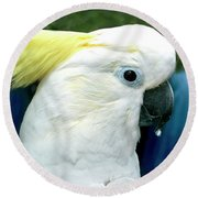 Cockatoo Bird Round Beach Towel