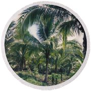 Coconut Farm Round Beach Towel