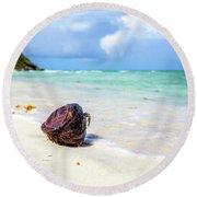 Coconut On The Beach Round Beach Towel