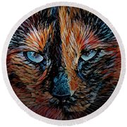 Coconut The Feral Cat Round Beach Towel