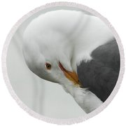 Cold Beak Round Beach Towel