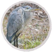 Cold Blue Heron Round Beach Towel