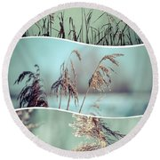 Collage Of Winter Grass Round Beach Towel