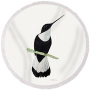 Collared Inca Hummingbird Round Beach Towel
