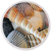Collection Of Shells Round Beach Towel