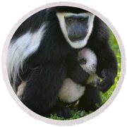 Colobus Monkey With Baby Round Beach Towel