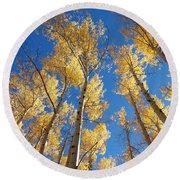 Colorado Aspen Round Beach Towel