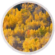 Colorado High Country Autumn Colors Round Beach Towel