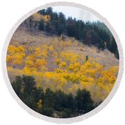 Colorado Mountain Aspen Autumn View Round Beach Towel