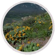 Colorado Spring Wildflower And Mountain Portrait Round Beach Towel by Cascade Colors