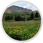 Colorado Wildflower Spectrum Round Beach Towel