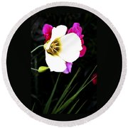 Colorado Wildflower1 Round Beach Towel