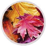 Colorful Autumn Leaves Closeup Round Beach Towel
