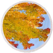 Colorful Autumn Reaching Out Round Beach Towel