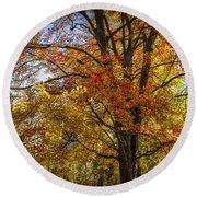 Colorful Autumn Tree In Southwest Michigan By Gun Lake Round Beach Towel