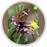 Colorful Butterfly On Daisy Round Beach Towel