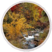 Colorful Canyon Round Beach Towel