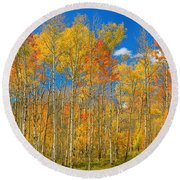 Colorful Colorado Autumn Landscape Round Beach Towel