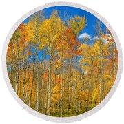 Colorful Colorado Autumn Landscape Round Beach Towel