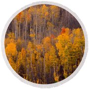 Colorful Colorado Autumn Landscape Vertical Image Round Beach Towel